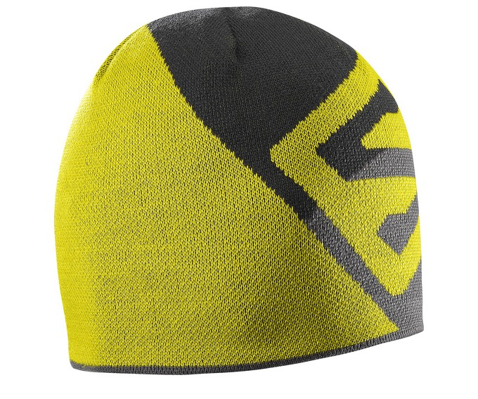 Salomon FLAT SPIN SHORT BEANIE за 900 руб.