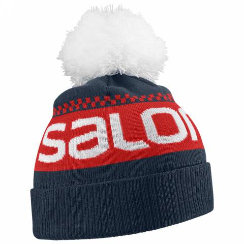 SALOMON JUNIOR LOGO BEANIE за 1000 руб.