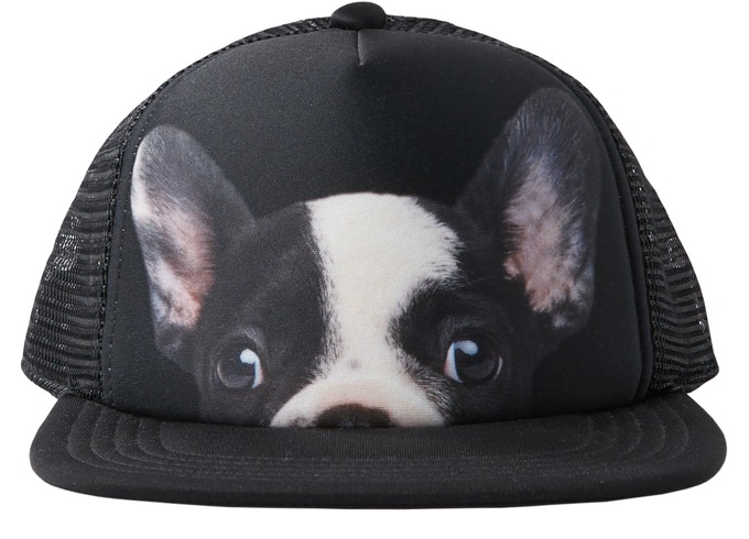 Adidas Puppy Pack Trucker Cap за 1300 руб.